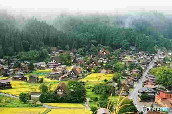 日本のちょうど中央に位置する「岐阜県」は、山と川に囲まれた自然豊かな地。西からも東からもアクセスしやすいということもあり、一年を通し、多くの観光客が訪れる人気の観光地として知られています。まるで絵本の世界のような世界文化遺産「白川郷」、天下三名泉「下呂温泉」、レトロな街並みが人気の「飛騨高山」…など、魅力あふれる観光スポットがいっぱいです。