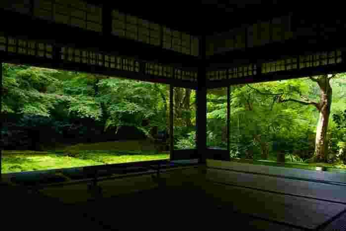 現存する数寄屋造りの建物や庭園は、大正末期から昭和にかけて別荘としてつくられました。旅館として使われた時期もあり、寺院となったのは近年のこと。訪れる人を迎え入れる山門や参道、「臥龍の庭」や茶庵など、ぜひ時間を十分にとって、ゆっくりと空間全体を味わいたいものですね。