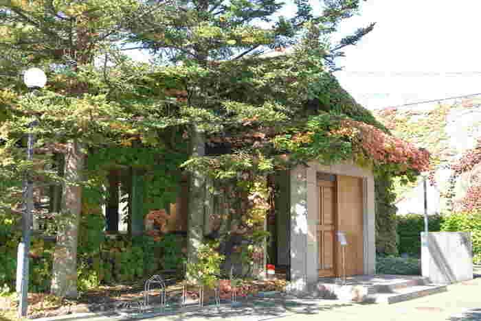 こちら図書スペースになっている「六花文庫」(冬季休館) 蔦に覆われ、季節ごとの彩りを楽しませてくれる外観です。中では食に関する約8000冊の蔵書を珈琲とともに味わうことができます。