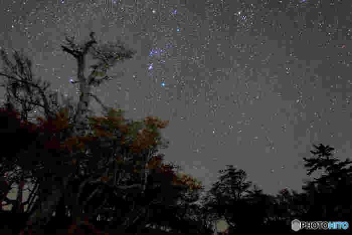 夜になると大台ケ原では、満天の星々が煌めきます。ここは、関西でも指折りの星空ウオッチングスポットとしても有名です。