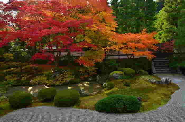 この美しさを存分に堪能するならば、拝観開始直後がおすすめです。少し拝観料が高いかな?と感じていた方も美しい庭園を目の当たりにすれば納得するはずです。