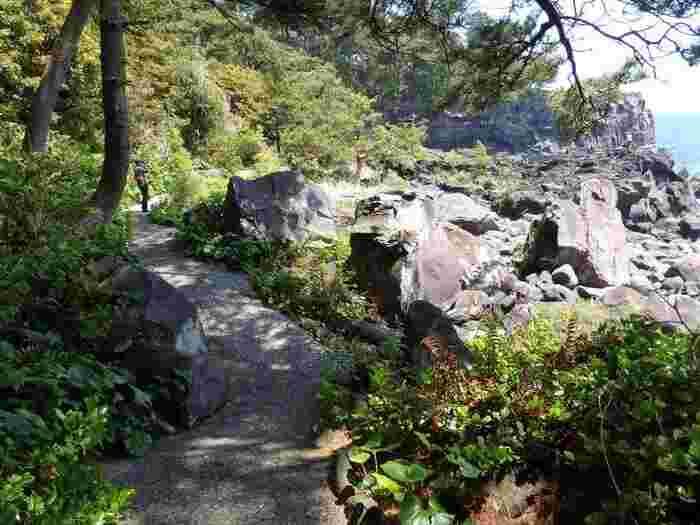 城ケ崎海岸の起伏を楽しみながら、城ケ崎の地形を体感できるのが城ヶ崎海岸ピクニカルコースです。舗装された遊歩道が吊り橋を含む海岸線に沿って3キロ程続いています。