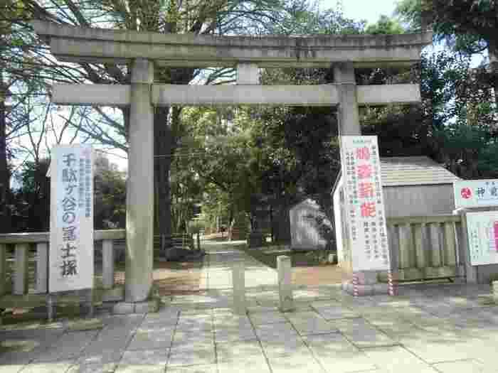 """千駄ヶ谷駅から歩いて5分ほどのところにある「鳩森八幡神社」の由来は、神社の近くの林に降りた白い雲に近づいたところ、たくさんの白い鳩が飛び去る縁起がいい現象に出会ったことがきっかけだったそう。その後、神さまが宿る小さな祠を作り""""はとのもり""""と名付けました。"""