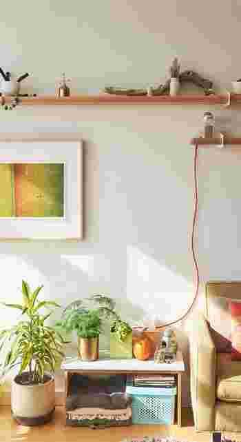緑をプラスするだけで、部屋の雰囲気は一気に明るくなります。 すでに部屋においてあるインテリアと見比べながら、ぴったりのグリーンを見つけてみてください。