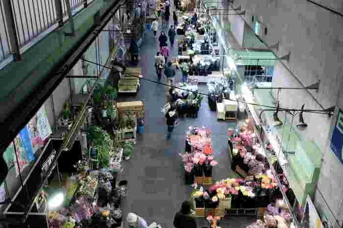こちらは、ある日の大田市場の様子。場内の仲卸業者は18社あり、日本国内では最大規模の花市場です。