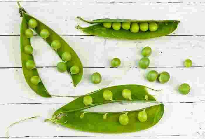 いんげん、枝豆、そら豆…夏に食べたい「豆」を使ったビーンズレシピ