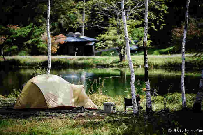 おうちで過ごすようにキャンプを楽しむグランピングの人気もあり、最近ではアウトドアグッズもスタイリッシュに進化しています。レジャーシーズンだけでなく、せっかくならおうちでも素敵に楽しんでみませんか?