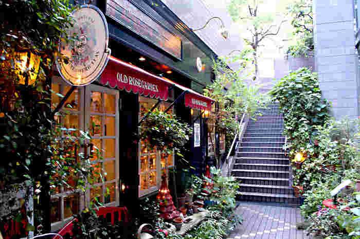 淀屋橋の路面から階段を下ると、グリーンが素敵な空間が広がります。本当にロンドンにいるかのような雰囲気。