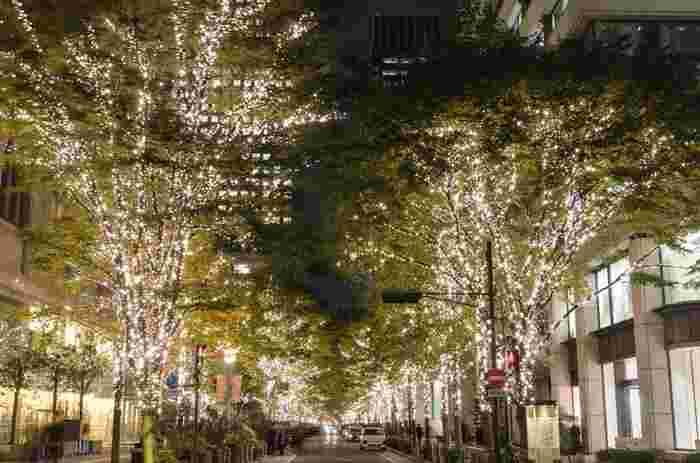 丸の内イルミネーションでは、有楽町と大手町を結ぶ約1.2キロメートル丸の内仲通りの街路樹がライトアップされます。