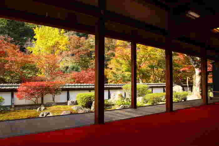正暦寺は、992年に一条天皇の命によって建立された真言宗の寺院です。境内には、3000本を超えるカエデが植樹されており、晩秋になると深紅に染まり美しい景色を見せてくれます。