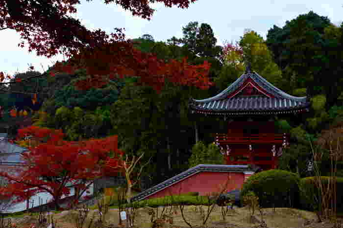 二上山麓に位置する高野山真言宗、浄土宗の當麻寺は、7世紀に創建された日本有数の古寺です。