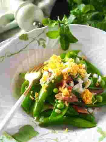 旬の野菜&彩りでひと工夫♪「春レシピ」でお花見や季節の献立を楽しもう