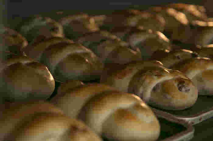 いかがでしたか?他にも筑後エリアには素敵なパン屋さんがたくさんあります。ぜひ、小麦が美味しい筑後エリアのパン屋さん巡りをしてみてはいかがでしょうか?