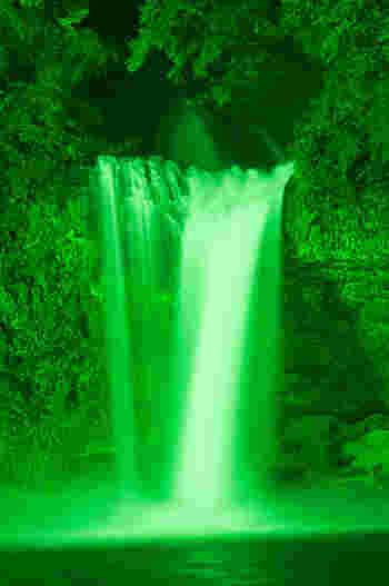 夜はライトアップされて、滝が緑色へと変わります。夜ならではの幻想的な表情も魅力的です。