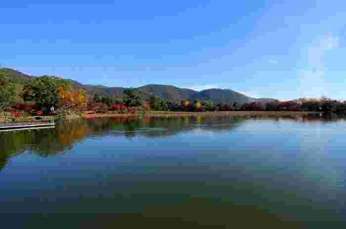 大覚寺境内に東部に位置する「大沢池」は、国指定名勝地。電線や電柱等の人工物が目に入らず、平安期さながらの風雅な景色が楽しめます。