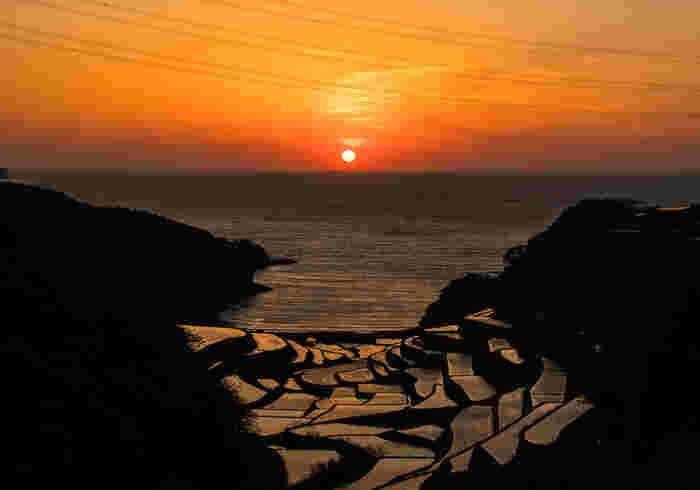 浜野浦の棚田 © TsuruSho7 クリエイティブ・コモンズ・ライセンス(表示4.0 国際)https://creativecommons.org/licenses/by/4.0/  お米を愛する日本人の、心の故郷とも言えそう。先人たちが傾斜である山・谷を切り開き、稲作ができる水田に整えた「棚田」の風景が、今も日本の一部の米どころには残っています。  なかでも佐賀県の「浜野浦の棚田」は小さな入り江に面しており、夕暮れ時になると、オレンジ色に染まる空・水面×黒い影とのコントラストが見事。切り絵のようにも見えます。先人の創意工夫に想いを馳せる、心豊かな時間を過ごしてはいかがでしょう。