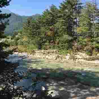 お店のすぐそばには穂高川。澄んだ川と水が流れる音、木々の緑が美しいですね。