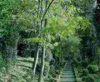 どの庭園も素晴らしいものばかりで行ってみたくなりませんか?ショッピングに観光!といった旅行スタイルもいいですが、現地の自然に触れ合ったり建築物とお庭の調和を楽しんだりといったスタイルもなかなかいいものではないでしょうか。海外なのでなかなか気軽に行ける場所ではありませんが、ぜひ次の長期のお休みの旅行計画の参考になれば嬉しいです!