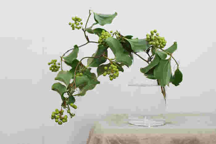 枝が垂れ下がるような形状のものだと、フラワーベースが重みで倒れてしまうことがあります。本体がどっしりと重みのあるものだとそんな心配もご無用ですね。