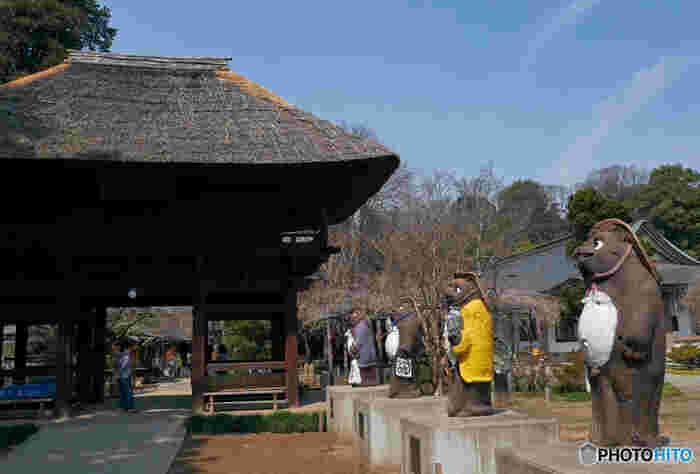 館林にはぶんぶく茶釜で有名な「茂林寺」があります。ついでに立ち寄ってみてはいかが?