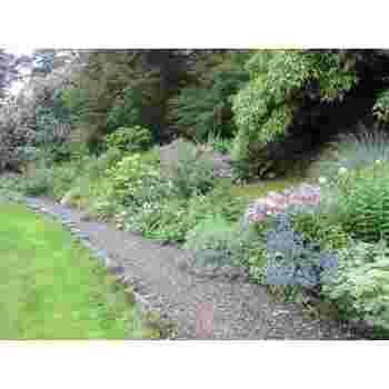 水仙、ブルーベル、ツツジなど、四季折々の花は散策する人々の心を癒す美しさ。