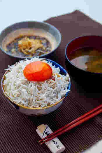 魚介類の中では禁漁を終えたイワシの稚魚である「しらす」や、鉄分ミネラルが豊富で美肌効果も期待できる「ひじき」も美味しい時期を迎えます。しらすは手軽に食卓に出すこともでき、カルシウムも豊富なのでレパートリーを増やしておくと便利な食材です。
