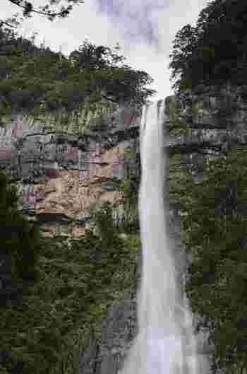 遠くは熊野灘からもその姿が見える那智の滝は、熊野山の中でも圧倒的な存在感を放っています。滝口から滝壷までの落差は133メートルに及び、すさまじい轟音は、まるで大地の鼓動のようです。