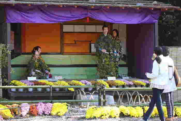 春や新緑の頃も気持ちよく散策できますが、岐阜公園で毎年10月下旬~11月下旬に開催される「菊人形・菊花展」もおすすめです。愛好家の方々が大切に育ててきた約3,000鉢の菊が一同に展示される他、菊人形も見応えがあります。