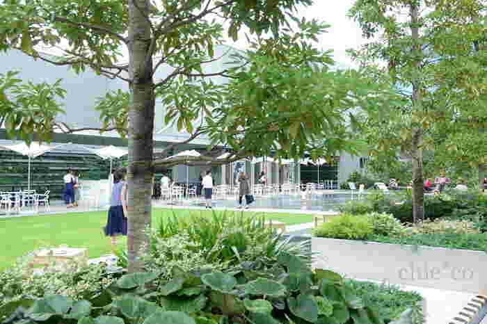 屋上には、約4,000㎡に及ぶ銀座最大の庭園があります。都会のど真ん中で自然の緑に囲まれる環境は、外の空気を感じながら休憩するのにピッタリ♪1周できるようになっており、東京の街を見渡すことができます。