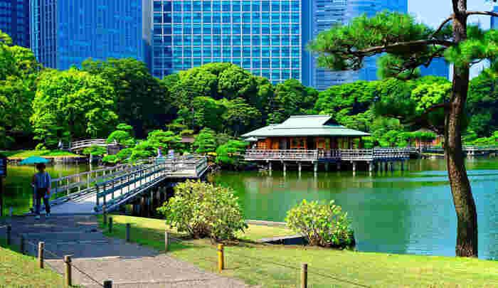 築地場外市場から徒歩約10分の場所にある「浜離宮恩賜庭園」。江戸時代に将軍家の別邸として使われていた庭園で、東京湾の海水を引いた「潮入の池」は都内唯一のものです。池を見渡す「中島の御茶屋」ではお抹茶も頂けます。