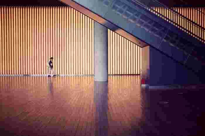 壁一面の木材が作り出す世界は、未来的な空間の中で堂々たる印象を与えています。