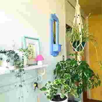 """「オリヅルラン」の代表的な飾り方といえば""""ハンギング(吊鉢)""""。お部屋の中や窓辺に吊るすと鮮やかなグリーンがひと際映えて、お部屋の中が爽やかな印象に♪♪"""