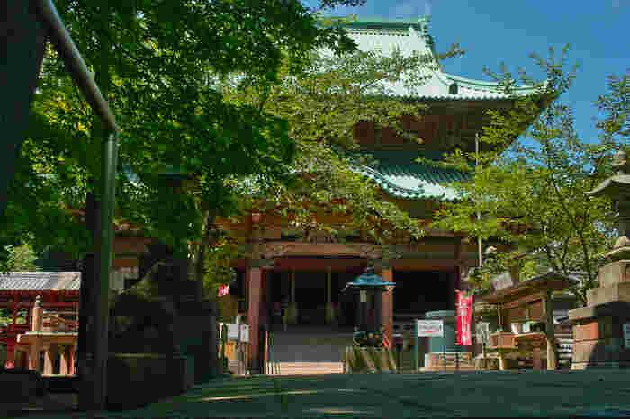 熊野峰の山頂部には、聖徳太子によって598年に開基された関東地方最古の寺院、鹿野山神野寺が鎮座しています。