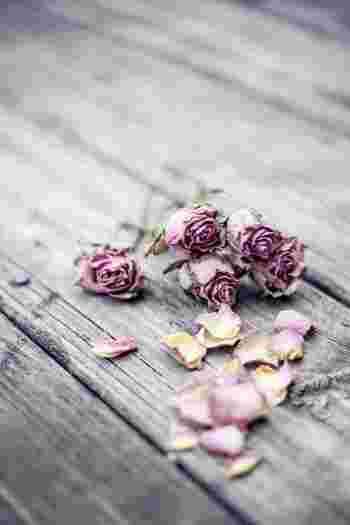 花びらの多い大輪のものは乾きにくく、満開のものは花びらが落ちやすいのでドライフラワーには不向き。咲き切る前にドライフラワーにしましょう。蕾やスプレーバラならキレイなドライフラワーになります♪