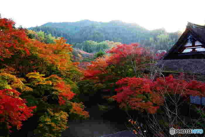 奈良県桜井市の山間部に位置する談山神社は、大化の改新で活躍した藤原鎌足を主祭神として祀る神社です。