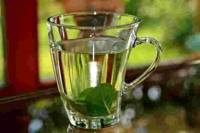 スッキリとした爽やかな香りで気分をリフレッシュさせてくれる「ミント白湯」には、ストレスを和らげてくれる効果があるそうです。また、アレルギー症状改善も期待できるそうなので花粉の時期にもおすすめ。 作り方は、カップ1杯に対して、ミントを2~3枚入れて白湯を注くだけでOK。