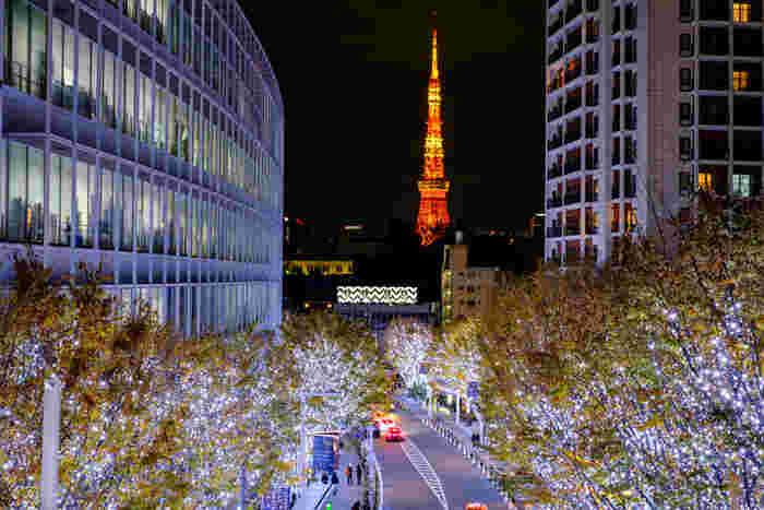 東京駅と渋谷駅のちょうど中間あたりに位置する「六本木・赤坂」。大型商業施設やクラブなどが多く、夜ににぎわうイメージがある街ですが、美術館や歴史的建造物などもあり、昼間からたっぷり観光を楽しめます。また、エリア外ではありますが、東京タワーまでお散歩がてら行くことも可能です。