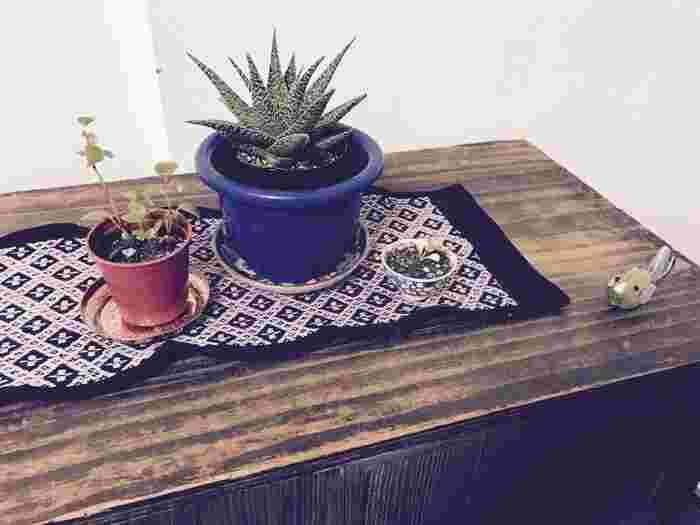繊細で美しいこぎん刺しのコースターは、グリーンの下に敷いてもおしゃれ。伝統的なテキスタイルがモダンな雰囲気に。素敵な鉢と可愛い植物も、眺めているだけでほっこり癒されます。