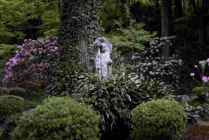 三千院は、京都市内にあるにもかかわらず、大勢の観光客で賑わう京都市内中心部の喧騒が嘘のように静かで落ち着いた佇まいをしています。