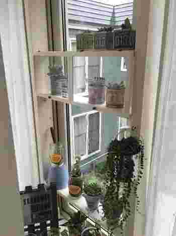こちらは出窓に作ったおしゃれな多肉植物コーナー。中段のショーケース風のアクセントも、まるで雑貨屋さんのような雰囲気ですね!場所に合わせて自由にデザインできるのも、ディアウォールならではの魅力です。