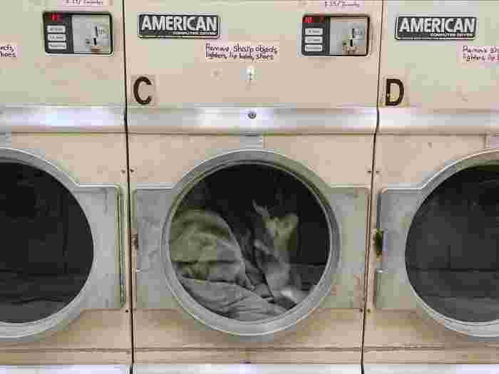 容量や重さが分からない場合は、実際に洗濯機に入れてみて、隙間が20%以上あれば、洗うことが可能です。