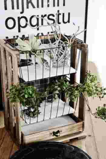 今度は使い方をアレンジ!先ほど作ったシェルフですが、植物を入れると雰囲気が大きく変わってまた素敵ですね。100均にはエアプランツなどの観葉植物やフェイクグリーンも充実しています。ナチュラルなシェルフはグリーンやドライフラワーにもぴったりです。