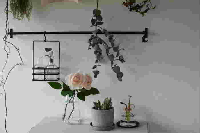 下部のパーツだけで花瓶として使用するのも◎。水耕栽培用と、花瓶としてなど季節やインテリアで使い分けても楽しいかも。