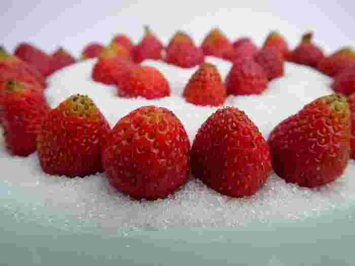一般的な糖度の割合と保存期間は以下の通りです。  ・糖度50%(果物と砂糖の割合=2:1)の場合は2週間。  ・糖度34%(果物と砂糖の割合=3:1)の場合は7~10日。  お店のように瓶詰めや脱気処理が出来ない場合は小分けにして冷凍保存しましょう。また、その場合の保存期間は3~6ヶ月で、糖度が高いほど保存期間が長くなります。