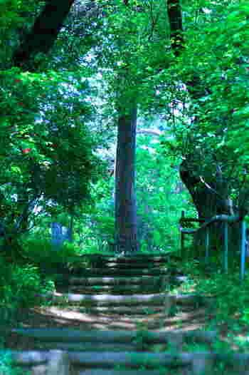 夏休みのお出かけに♪関東近郊「ジブリ映画」の世界を感じられるスポット