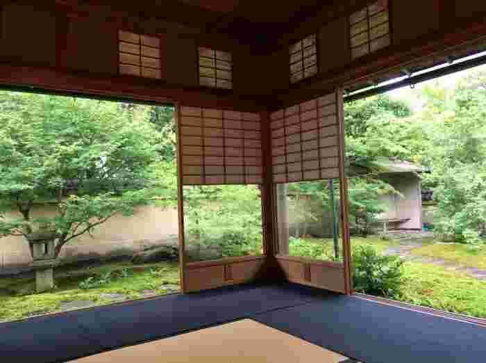 お庭の散策もできる「寿立庵」は、見学料・抹茶料込みで1,500円(税込)で利用できます。
