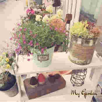 すのこは、ガーデニングとの相性がとてもいいんです。  すのこ棚はシンプルで主張し過ぎないので、主役の花やグリーンをより引きたたせて見せる効果も。オリジナルのガーデンスペースを作るのに最適です◎