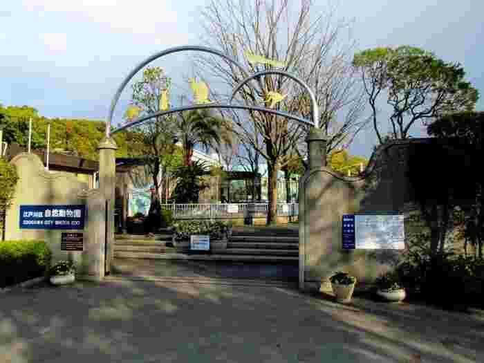 行船公園の中にある無料の動物園。プレーリードッグやウサギ、モルモット、ペンギン、ワラビーなど、小さめの動物が中心で、小さな子どもも楽しめます。