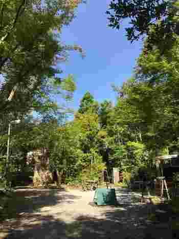 森を抜けるとひっそりと佇む邸宅が見えてきます。隣には土日のみオープンのテラス席で手作りピザなどが楽しめる「森のfumo」が。 春夏の爽やかな新緑の季節は深い緑が目に鮮やかで、とても気持ちがいいですよ。