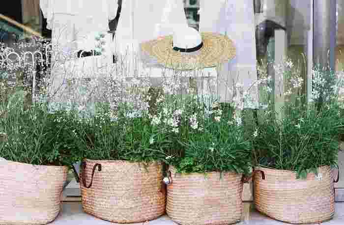 お出かけの機会が増える春は、紫外線対策も忘れずにすることが大切です。その日の予定にあった日焼け止めや日傘や帽子などのアイテムを活用し、家に帰ってきたらお肌を清潔な状態にリセットするのを忘れずに。また、食事に春野菜を取り入れるなど毎日のちょっとしたひと手間がシミやしわ予防につながり、一年後のお肌に差が出てきます。是非今日から試してみてくださいね♪